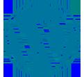 Ícone de wordpress
